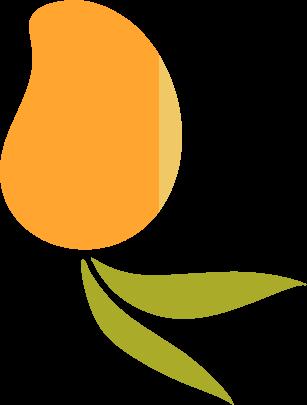 Orange Mango Illustration Asset